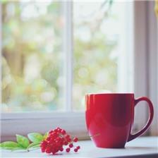 杯子跟花意境唯美图片欣赏