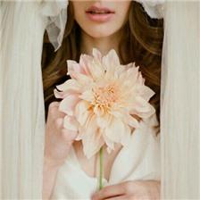 唯美的手捧花婚纱新娘图片