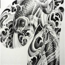 黑灰传统锦鲤鱼纹身手稿图片