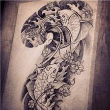 半胛锦鲤鱼纹身手稿图片