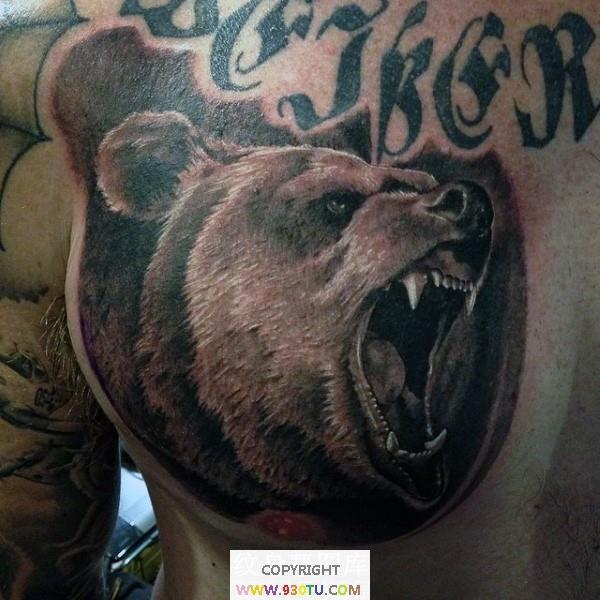 胸部写实彩色愤怒的熊头纹身(文身)图案